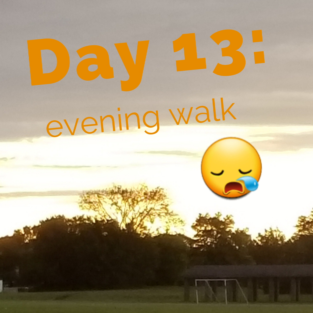 Day 13 – Exercise challenge: evening walk and I'm dragging 🤧