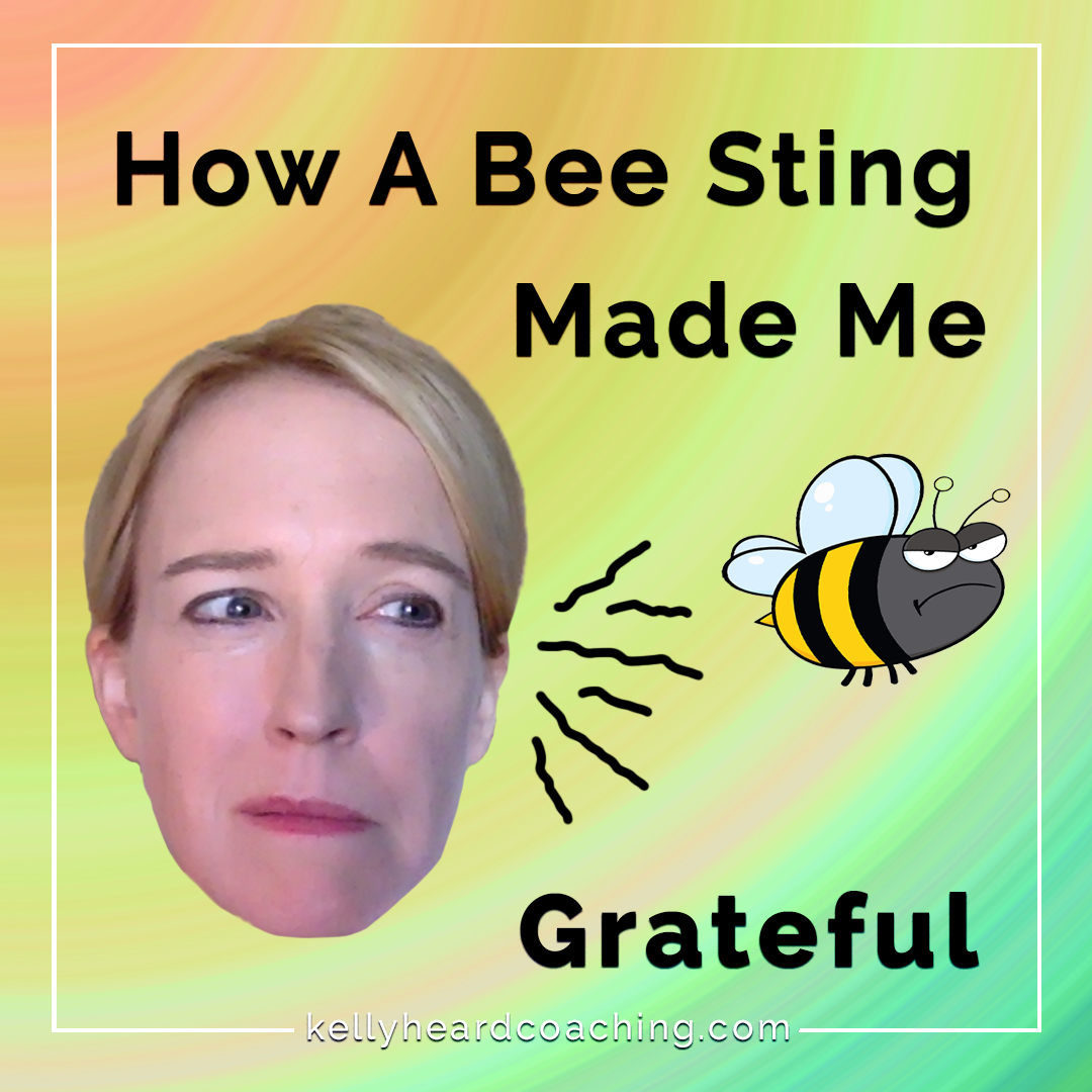How A Bee Sting 🐝 Made Me Grateful