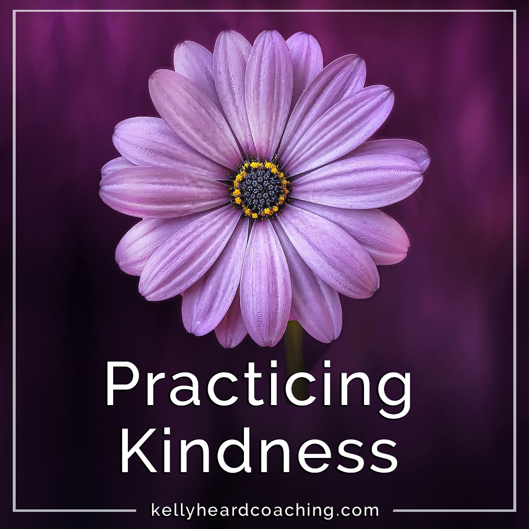 Prqcticing Kindness Kelly Heard Coaching purple gerber daily