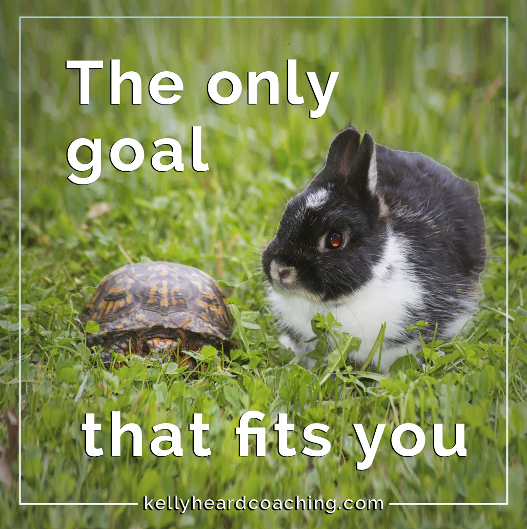 The only goal that fits you Kelly Heard Coaching bunny and turtle